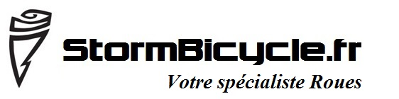 Logo + specialiste roues